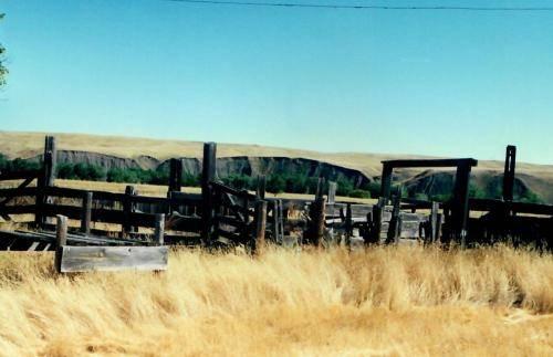 Sturgis Honey Vale Ranch Hive Location